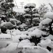 花咲鉄道 豪雪(?)に見舞われる!