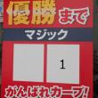 ズムスタ広島対横浜 5-4 残念Ⅿ1!