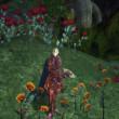 Rappelz(ラペルズ)の花