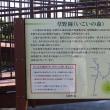 草野岡(いこいの森)