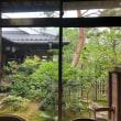 青井阿蘇神社横の喫茶