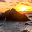 2017孤高のアオサギが日の出を待つ鵜の島 《福岡市東区志賀島》