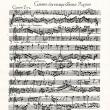 所沢ミューズ J.S Bach の「音楽の捧げもの」を聴きに