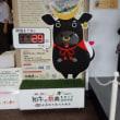 県庁で生涯学習と・・むすび丸&和牛 ヽ(^。^)ノ