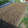 施肥耕耘。