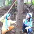さぬきの森 森林の楽校2017