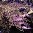 打上川治水緑地のライトアップ