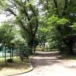 公園で一休み