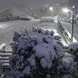 第5172弾・ついに初雪