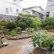 庭をきれいに保つ・・・いわき