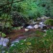 横谷峡の乙女滝周辺を廻った