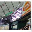 ■ 巨人 / 久しぶりの東京ドーム