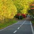 サイクリングロードの晩秋