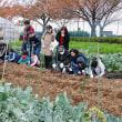 農業公園は秋の収穫祭