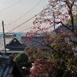 奈良の里山