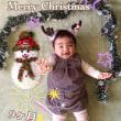 MERRY CHRISTMAS ! そしてチャリティカレンダー!