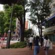 街外れを散歩