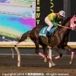 11月9日 3R ユーカリデビュー2歳新馬