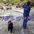 「 奥日光湯元温泉 」を観光~♪