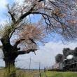 一本桜(磐西C57)