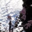 庵の秋(その二):巻積雲かなあ・・・