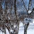 大茅スキー場~(県境尾根)~沖の山周回