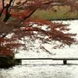 2468 池畔の秋