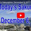 今日の桜島・・・鹿児島の風景 12月6日