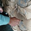 稲刈り後の籾は…その2