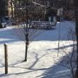 雪の日の足あと