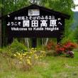 18年5/23~開田高原~アオゲラ・山野草