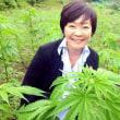 大発見!大麻が日本を救う⁉