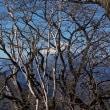 素晴らしい富士山を眺めながらもう体力の限界かなと思いはじめた丹沢;塔ノ岳(2019年2回目)