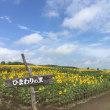 北海道ツーリング2017 04