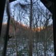 夏の間ロフトの窓を開け放つ事ができなかった理由がここにある