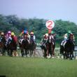 上期の競馬G1レースと「偶然の一致の法則」との相関。