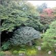 京都の旅一日目