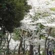 2018-03-27 今日の記録 写真展at有楽町