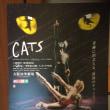 CATSに行ってきたよ!