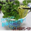 パクチー植木鉢風カップ麺・・・(自作)&大阪王将唐揚げ横綱ラーメン(自作)&新入生
