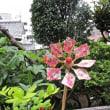 竹で作った風車に貼る和紙を切る