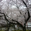 京都交通博物館と東寺
