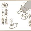 ビビり猫の不安解消