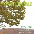 【オータムセール2017(Autumn Sale、1歳馬)】の「上場馬名簿」(2冊目、154頭分)が発行!