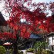 再度、鎌倉へ