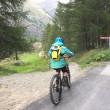 Zermatt Kate Moos Trail  VTT