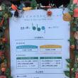 BBQ検定 at 森とルリのBBQフィールド