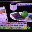 5/26・・・旅サラダプレゼント(本日正午まで)