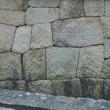 寺院右0455  鐘楼 北西にある  妙心寺内 日本最古・国宝