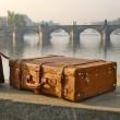 スーツケースの旅